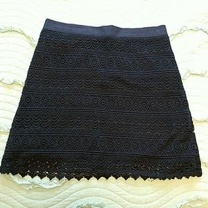 Loft Lace Skirt